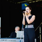 2014-Stadtfest-Delmenhorst-3635