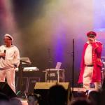 2014-Stadtfest-Delmenhorst-4318