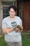 Tierschutz Delmenhorst